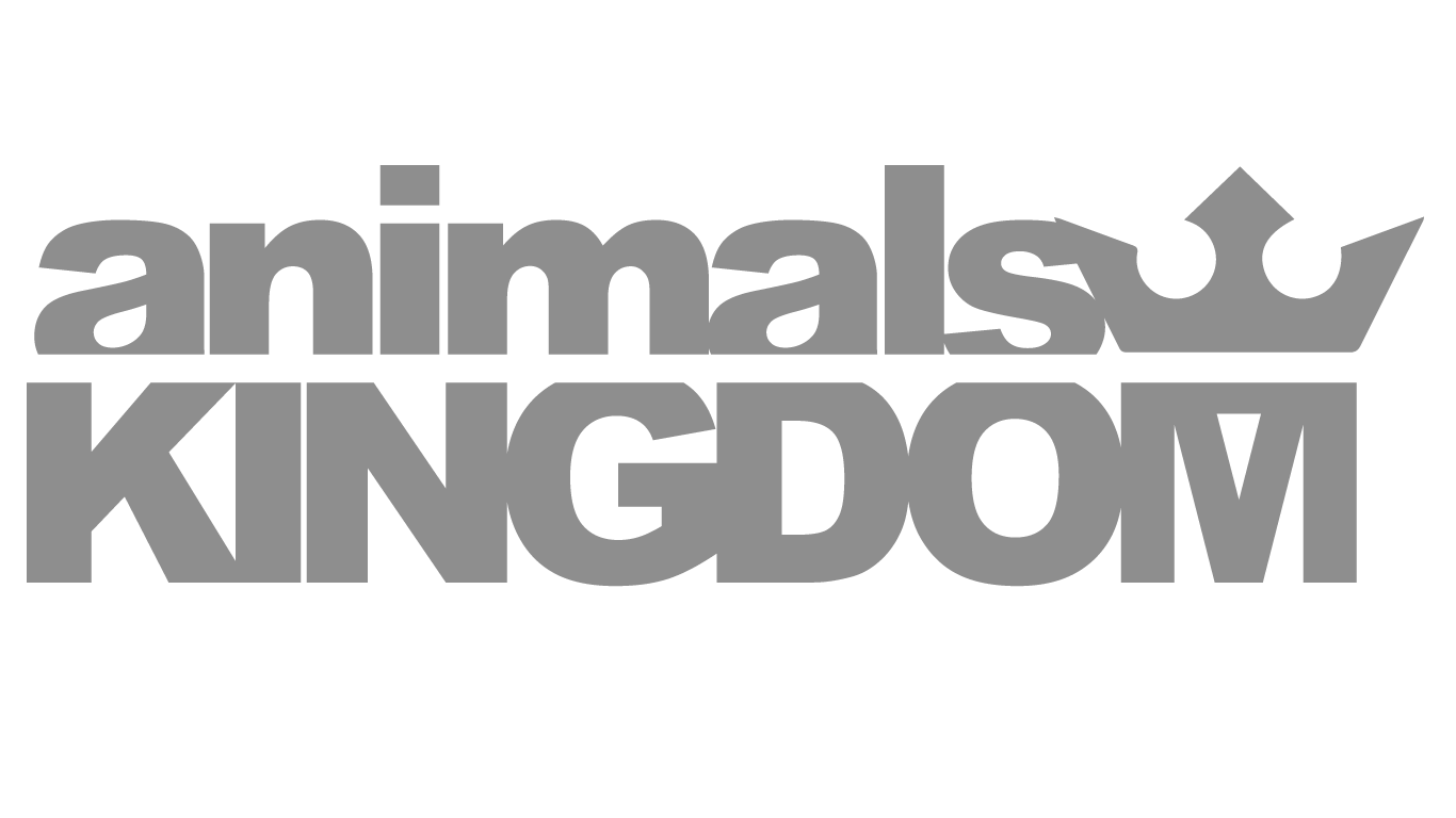 Animals X Kingdom